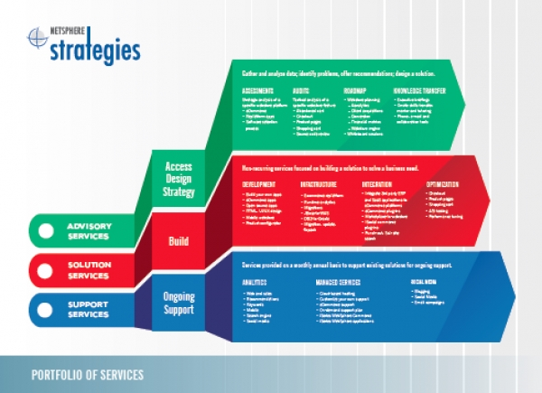 NetSphere Strategies Portfolio of Services